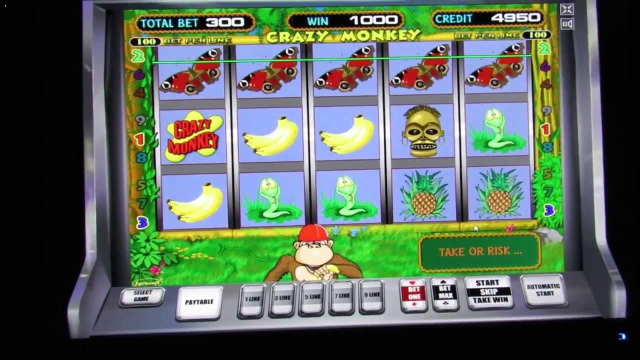 Игровой автомат Crazy Monkey Обезьянки играть бесплатно.